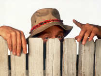 Wilson-home-improvement-tv-show-33144924-1024-768.png